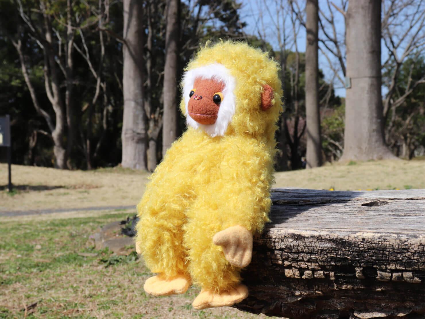 黄色いテナガザルさん
